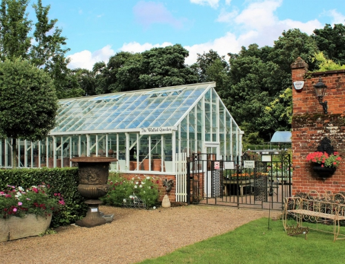 Greenhouses, hard work and future plans